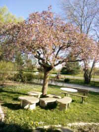 Evenement Dijon Visite du parc arboré de l'EPL de Quetigny (lycée agricole)