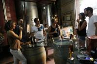 Evenement Perpignan Dégustation-vente de vins