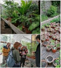 Evenement Angers À la découverte d'un bouquet de métiers de la production à la commercialisation végétale