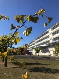 Evenement Rivières Parcours historié et artistique du lycée