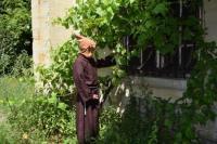 Evenement Auménancourt Flâner au jardin...