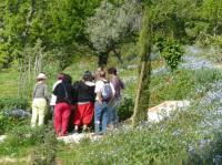 Evenement Roumoules A la découverte des insectes sauvages et des variétés anciennes de fruits dans les vergers de la Thomassine