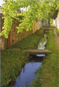 Evenement Pont de l'Isère Balade commentée au fil de l'eau : le canal de la Martinette
