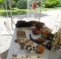 Evenement Auribeau sur Siagne Les missions, métiers et savoirs propres aux jardins botaniques (avec le réseau des jardins botaniques de France)