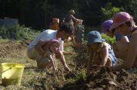 Evenement Rhône Un terrain, cent familles et plus de 30 ans de jardinage collectif