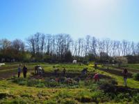 Evenement Caudeval Visite des Jardins partagés du Pays de Mirepoix