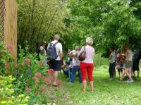 Evenement Surjoux Visite guidée d'1h30 de la bambouseraie en compagnie de son créateur