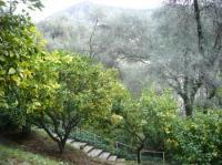 Evenement Saorge visite d'une citronneraie