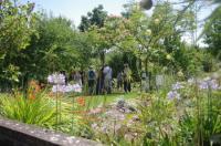 Evenement Saint Michel l'Observatoire Visites guidées des jardins de Salagon