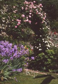 Evenement Rhône Visite découverte du jardin