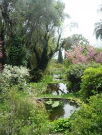 Evenement Saorge Visite du jardin Clos du Peyronnet à Menton.