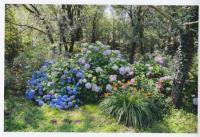 Evenement Asperjoc Visite des jardins labellisés Jardin remarquable