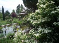 Evenement Pont de l'Isère Visite commentée par la propiétaire du jardin.