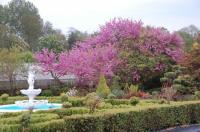 Evenement Herbisse Visite guidée du jardin du Livon à Longueville-sur-Aube