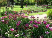 Evenement Val de Vesle Promenade commentée au Jardin d'horticulture-Pierre Schneiter