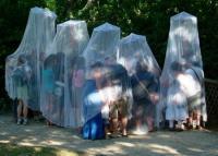 Evenement Roumoules Spectacle La réserve des moustiques