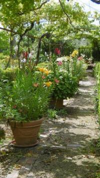 Evenement La Rochette Visite commentée du jardin