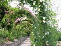 Evenement Rhône Visite commentée des Jardins du Rosaire