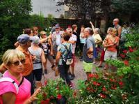 Evenement Le Montet Visite libre ou commentée du Jardin des Némusiens