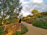 Evenement Rhône Visites commentées des Jardins de La Rejonière