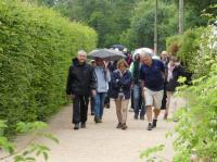 Evenement Loire Marche du sentier de la rose
