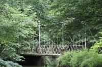 Evenement Gorrevod Visite commentée du parc du château de Pont-de-Veyle