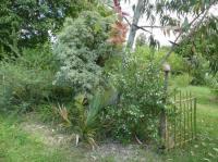 Evenement Rochecolombe Visite découverte du jardin de Rochevieille, jardin d'essai et d'acclimatation en Ardèche