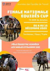 Evenement Talmont Saint Hilaire Finale nationale équidés cup