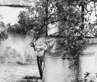Evenement Orléans Les crimes, légendes et mystères d'Orléans