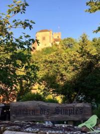 Evenement Villeneuve Visite et animations au jardin des Simples de Vertrieu