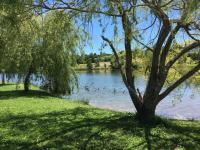 Lac-du-Grecq-ORTHEZ-4- Orthez