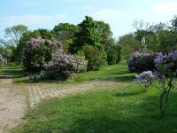 Jardins de l´Ecole du Breuil Champigny sur Marne