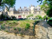 Square Paul Painlevé Paris
