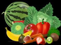 Idée de Sortie Coulommes et Marqueny Au Jardin Fermier (Horticulture, Fruits et Légumes)