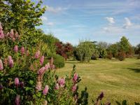 Les Jardins ethnobotaniques de Haute Terre Dordogne