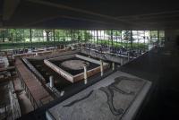 Idée de Sortie Notre Dame de Sanilhac Vesunna Site-musée gallo-romain de Périgueux