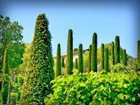 Les jardins du Chateau Val Joanis Vaucluse