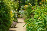Le Jardin de Papy Morbihan