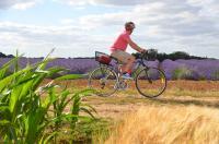Idée de Sortie Eure et Loir Point de location vélos Camping du moulin à Tan