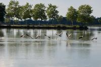 2012-POMAREZ-Lac-de-Tastoa-001 Pomarez