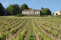 Idée de Sortie Saint Laurent des Vignes Château Le Fagé