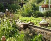 Evenement Grand Verly Stage santé, alimentation, plantes