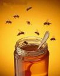 Idée de Sortie Éteignières Producteur de miel