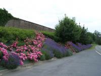 Idée de Sortie Bulson REMILLY AILLICOURT, Village Fleuri 2 Fleurs