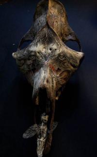 Magasin Bretagne Naia Museum - Arts de l'imaginaire fantastique