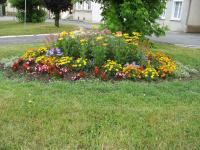 Idée de Sortie Chappes ROCQUIGNY, Village Fleuri 1 Fleur