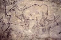 Idée de Sortie Rouffignac Saint Cernin de Reilhac Boucle des Mammouths