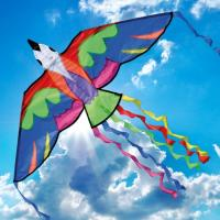 Evenement Sainte Ramée Fête du vent à Terres d'Oiseaux