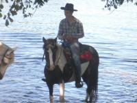 Idée de Sortie La Douze Ferme Equestre de la Franval