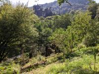 Idée de Sortie Saint Geniez ô Merle Visite Guidée Thématique : l'Homme et la Nature au Moyen-Age